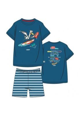 Heren pyjama blauw...